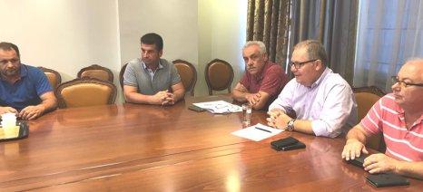 Σύσκεψη πραγματοποιήθηκε χθες για τα κρούσματα βρουκέλλωσης σε κτηνοτροφική μονάδα στη Λεκάνη Καβάλας
