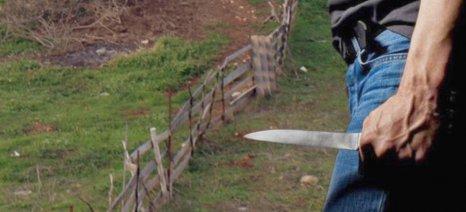 Βγήκαν μαχαίρια μεταξύ συγγενών στον Αλμυρό για περιουσιακά και βοσκοτόπια