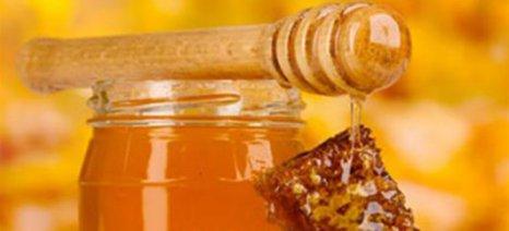 Σήμερα τα εγκαίνια του 10ου Φεστιβάλ Μελιού & Προϊόντων Μέλισσας
