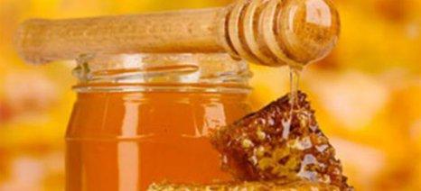 Μουσείο Μελισσοκομίας και ελληνικού μελιού στον Πύργο Συγγρού
