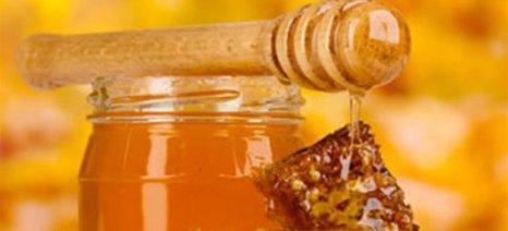 Εκτός το μέλι από την οικοτεχνία- διέξοδος με ΥΑ η άμεση διάθεση από παραγωγούς έως 1.200 κιλά!