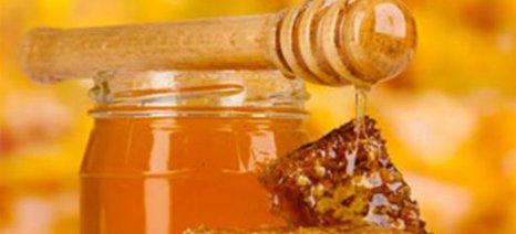 Χαρτογραφείται το μέλι της νησιωτικής Ελλάδας