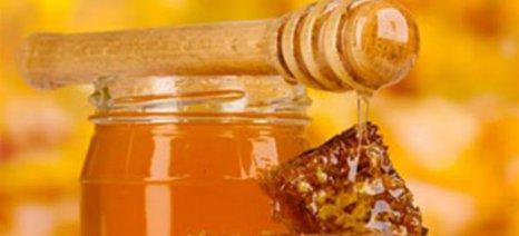 Πληρωμές για μέλι, φρούτα, αμπελώνες και επενδυτικά σχέδια