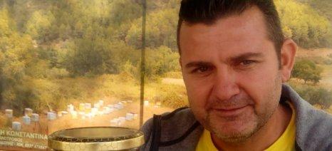Μειωμένη η παραγωγή του μελιού στη βόρεια Ελλάδα λόγω του καιρού