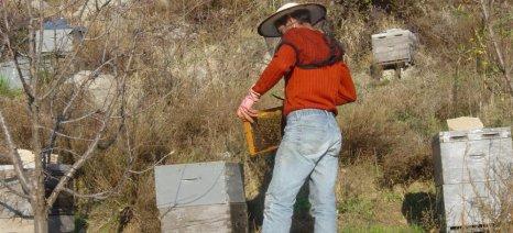 Και οι μελισσοκόμοι της Μαγνησίας συμμετέχουν στις κινητοποιήσεις