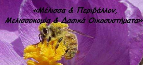 Ημερίδα για τη μελισσοκομία και το περιβάλλον στην Αθήνα στις 19 Μαΐου