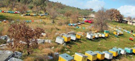 Προθεσμία ως τις 30 Απριλίου για αιτήσεις επιδότησης μετακινούμενων μελισσοκόμων