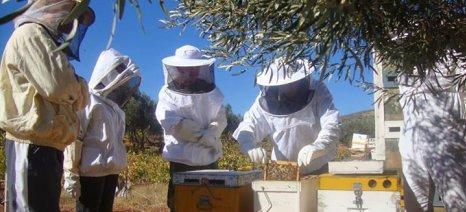 """Τριήμερη ταχύρρυθμη εκπαίδευση μελισσοκόμων στον ΕΛ.Γ.Ο. """"Δήμητρα"""" Σκύδρας"""
