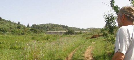 Φάρμα καλλιέργειας κλωστικής κάνναβης κοντά στο Πεταλίδι Μεσσηνίας