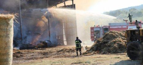 Ζημιές από φωτιά σε αγελαδοτροφική μονάδα στη Μέστη Έβρου