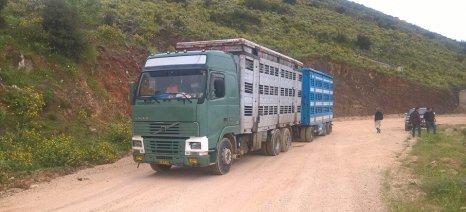 Ερώτηση βουλευτών ΣΥΡΙΖΑ για τη μεγάλη ουρά αναμονής στις εξετάσεις οδηγών φορτηγών για παραγωγικά ζώα