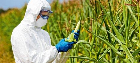 Όχι από το ευρωκοινοβούλιο σε νέα μεταλλαγμένα προϊόντα από καλαμπόκι και σόγια