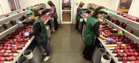 Ενισχύσεις 20 εκατ. ευρώ σε αγροδιατροφικές και άλλες μικρομεσαίες επιχειρήσεις της Θεσσαλίας