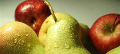 Φρούτα που προκαλούν φούσκωμα στην κοιλιά