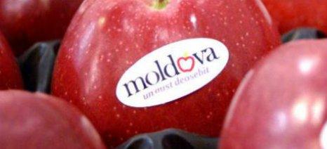 Άνοιγμα των συνόρων για τα φρούτα της Μολδαβίας αποφάσισε η Ε.Ε.