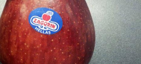 Στο Ισραήλ κατευθύνεται το πρώτο φορτίο με μήλα Ζαγορίν