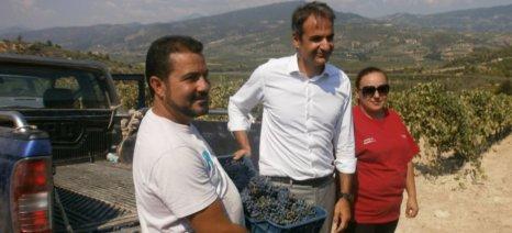 Αγροτικές συνεταιριστικές μονάδες και επιχειρήσεις θα επισκεφθούν στελέχη της ΝΔ πριν τη ΔΕΘ στη Βόρεια Ελλάδα