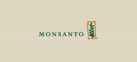 Διαψεύδει η Monsanto τη σύνδεση των προϊόντων της με τον ιό Ζίκα και τη μικροεγκεφαλία
