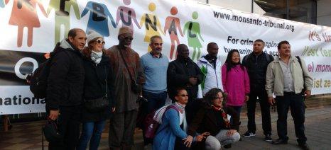 Δράση για την ελευθερία των σπόρων αύριο από το Πελίτι στον πεζόδρομο της Κοραή στην Αθήνα