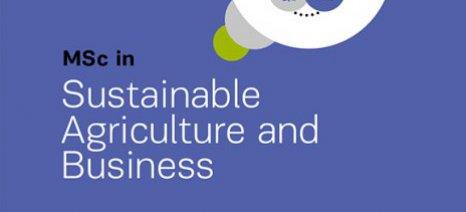 """Νέο μεταπτυχιακό πρόγραμμα """"Αειφόρος Γεωργία και Επιχειρήσεις"""" από το Διεθνές Πανεπιστήμιο της Ελλάδος"""