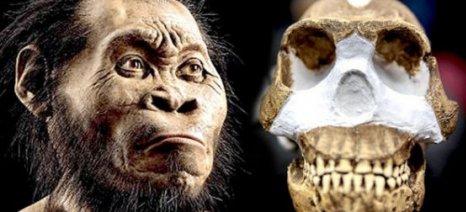 Ανακαλύφθηκε νέο συγγενικό είδος του ανθρώπου στη Ν. Αφρική