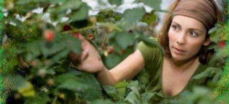 Μεγάλη η συμμετοχή γυναικών στα γεωργο - περιβαλλοντικά μέτρα