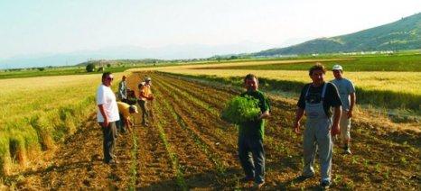 Κίνδυνος να χαθούν πάνω από 1 δισ. ευρώ από το Πρόγραμμα Αγροτικής Ανάπτυξης