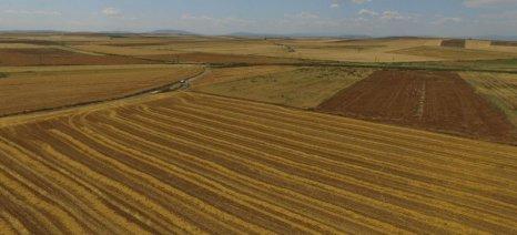 Ενεργοποιήθηκε η καταχώρηση παραστατικών για τις βιολογικές καλλιέργειες
