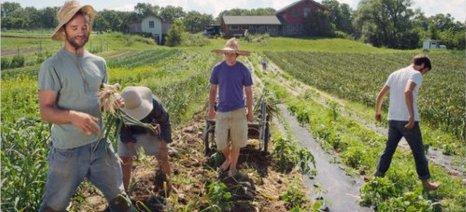 Μπαίνει και ο αγροτικός τομέας στο κοινωνικό επιχειρείν