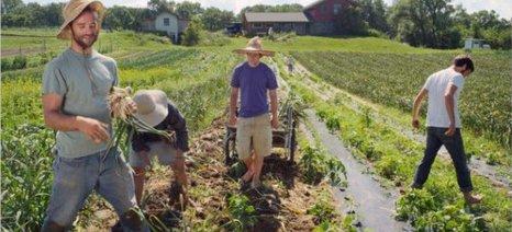 """Δωρεάν εκπαίδευση σε νέους αγρότες με το πρόγραμμα """"Νέα Γεωργία για την Νέα Γενιά"""""""