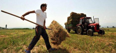 Δικαιούχοι εξισωτικής αποζημίωσης και οι αγρότες έως 67 ετών