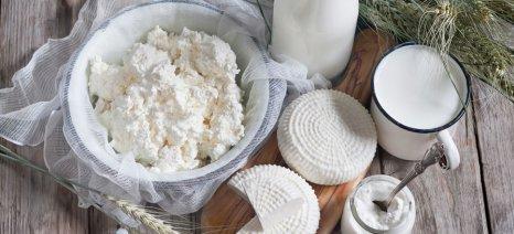 Η αυξανόμενη ζήτηση για τυροκομικά οδηγεί σε αύξηση παραγωγής γάλακτος έως το 2030