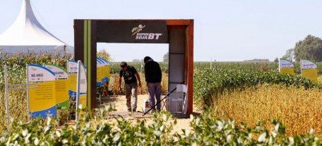 H Syngenta εξαγόρασε την Nidera Seeds από την COFCO International