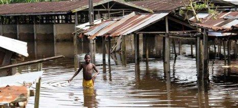 Συνολικά 26.000 βοοειδή έχασαν τη ζωή τους από τις φετινές πλημμύρες στο Νίγηρα