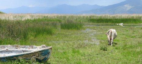 Ξεκολλάνε οι πληρωμές για τα γεωργοπεριβαλλοντικά μέτρα της περιόδου 2007-2013