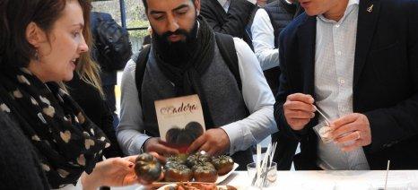 Ο πραγματικός νικητής στα βραβεία καινοτομίας της Fruit Logistica ήταν η βελτιωμένη ντομάτα Adora