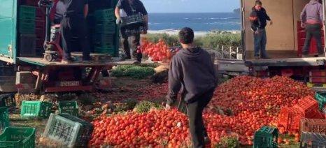 Πακέτο μέτρων για την αδιάθετη αγροτική παραγωγή της Κρήτης ετοιμάζει η Περιφέρεια