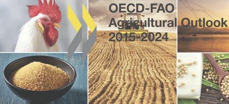 ΟΟΣΑ και FAO: «Σε πραγματικούς όρους, οι τιμές όλων των προϊόντων θα μειωθούν την επόμενη 10ετία»