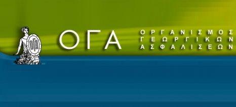 ΟΓΑ: Λάθη στην προσυμπλήρωση των φορολογικών δηλώσεων με τα ποσά από εργόσημο