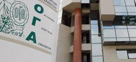Καταβολή τρίτης δόσης των οικογενειακών επιδομάτων σε 800.000 δικαιούχους από τον ΟΓΑ