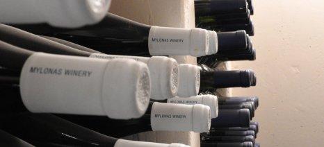 Με παράταση και σε τέσσερις δόσεις η καταβολή του ΕΦΚ στο κρασί για τα μικρά οινοποιεία