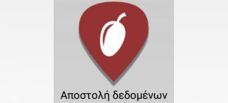 """Εφαρμογή για Smartphone """"προειδοποιεί"""" για ενδεχόμενα κρούσματα Xylella σε ελαιώνες"""