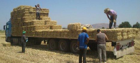 Όλες οι «αγροτικές» τροπολογίες που πέρασαν με το νομοσχέδιο του ΥΠΕΚΑ