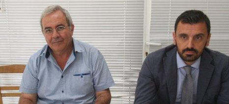 Εξώδικα κατά του ΕΛΓΑ ετοιμάζουν οι τοματοπαραγωγοί της Αμαλιάδας, εάν δεν λάβουν αποζημιώσεις μέχρι τέλος Νοεμβρίου
