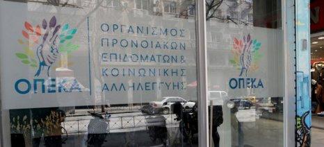 Μέχρι 9 Νοεμβρίου αιτήσεις στον ΟΠΕΚΑ για επίδομα σε 1.250 πολύτεκνες αγρότισσες μητέρες