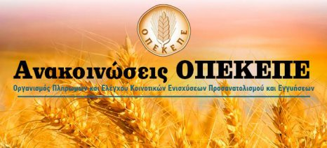 Προς το τέλος Μαρτίου τοποθετεί ο ΟΠΕΚΕΠΕ την πληρωμή της συνδεδεμένης στο βαμβάκι - αρχές Μαρτίου στο σιτάρι