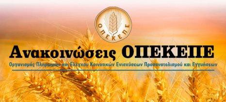 Ημερίδα του ΟΠΕΚΕΠΕ για την ενεργοποίηση δικαιωμάτων ενίσχυσης στην Κέρκυρα στις 19 Απριλίου