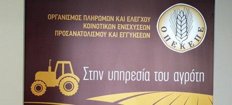 """Στην """"Καρτέλα του Αγρότη"""" θα μπορούν να ενημερωθούν όσοι υπέβαλαν ενστάσεις για αχρεωστήτως καταβληθέντα ποσά από τον ΟΠΕΚΕΠΕ"""