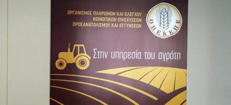 Ποιες περιπτώσεις εξαιρούνται από την αναγραφή του ΑΤΑΚ στη δήλωση ΟΣΔΕ