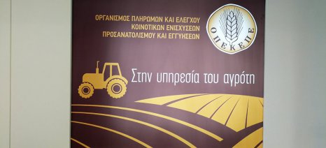 Συνολικά 116,4 εκατ. ευρώ πλήρωσε ο ΟΠΕΚΕΠΕ σε αγρότες και κτηνοτρόφους στις 18 Μαΐου